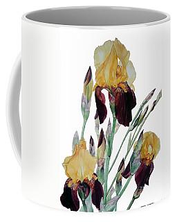 Watercolor Of Tall Bearded Iris In Yellow And Maroon I Call Iris Beethoven Coffee Mug