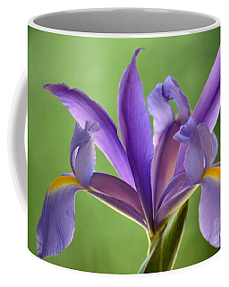 Iris Elegance Coffee Mug by Deb Halloran