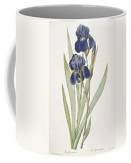 Iris Germanica Bearded Iris Coffee Mug