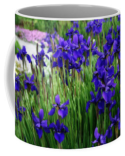 Coffee Mug featuring the photograph Iris In The Field by Kay Novy