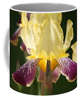Coffee Mug featuring the photograph Iris by Jolanta Anna Karolska