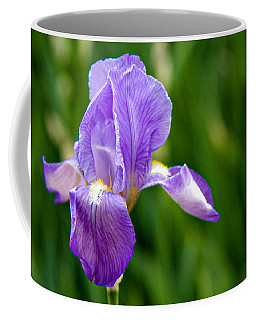 Coffee Mug featuring the photograph Iris by Lana Trussell