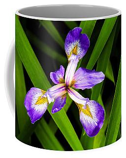 Iris Pinwheel Coffee Mug