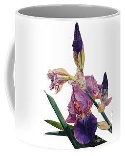 Watercolor Of A Tall Bearded Iris In A Color Rhapsody Coffee Mug