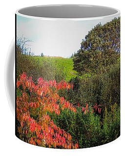 Irish Autumn Countryside Coffee Mug