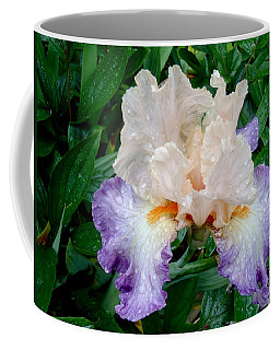 Irresistible Iris Coffee Mug