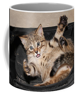 It Was This Big Coffee Mug