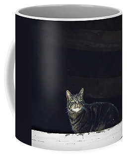 Coffee Mug featuring the photograph It's Snowing -- Looking Out The Barn Window by Joy Nichols