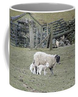 It's Spring Time Coffee Mug by Tiffany Erdman