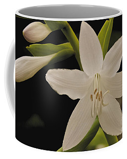 Its Summer Coffee Mug by William Norton