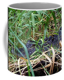 Coffee Mug featuring the photograph I've Got My Eye On You by Chris Mercer