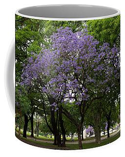 Jacaranda In The Park Coffee Mug