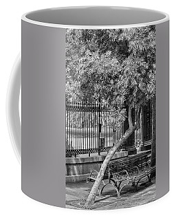 Jackson Square Bench And Tree Coffee Mug