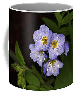 Coffee Mug featuring the photograph Jacobs Ladder by Alan Vance Ley