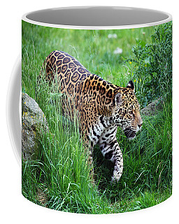 Jaguar On The Prowl Coffee Mug