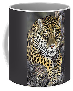 Jaguar Portrait Wildlife Rescue Coffee Mug