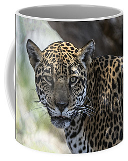 Jaguar Portrait Coffee Mug