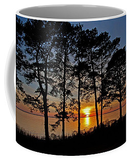 James River Sunset Coffee Mug by Suzanne Stout