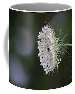 jammer Garden Lace 2 Coffee Mug by First Star Art