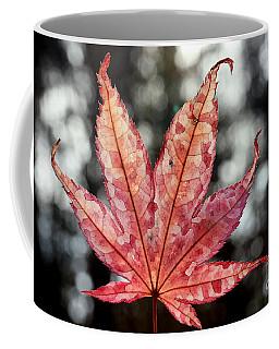 Japanese Maple Leaf - 2 Coffee Mug by Kenny Glotfelty