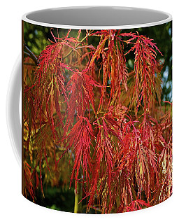 Japanese Maple Coffee Mug by Linda Bianic