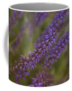 Jardin De Rue Coffee Mug