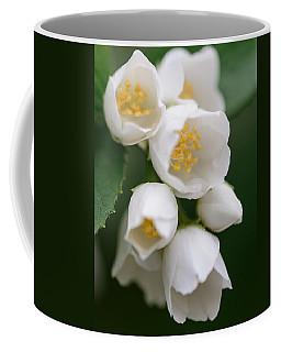 Jasmin Flowers Coffee Mug