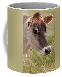 Jersey Cow Portrait Coffee Mug