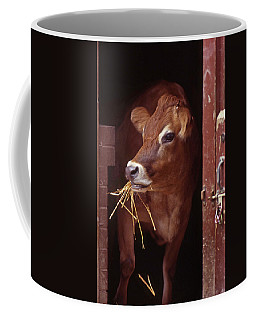 Jersey Cow Coffee Mug by Skip Willits