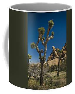 California Joshua Trees In Joshua Tree National Park By The Mojave Desert Coffee Mug