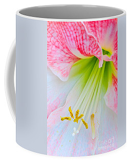 Joy Coffee Mug by David Lawson