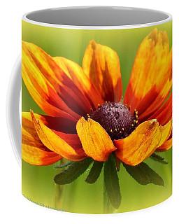 Judy Coffee Mug