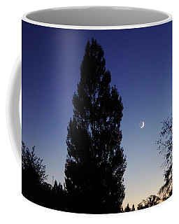 Julian Night Sky 2013 A Coffee Mug