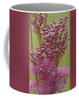 July Astilbe Coffee Mug