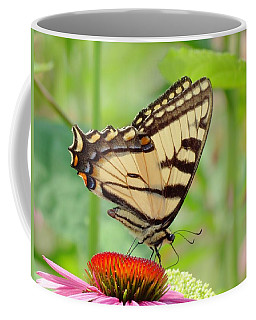 July Swallowtail Coffee Mug by MTBobbins Photography