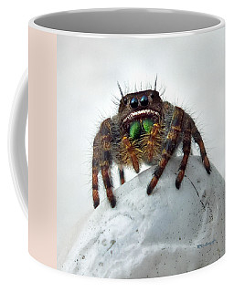 Jumper Spider 2 Coffee Mug