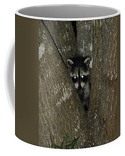 Baby Raccoon And Jesus Coffee Mug