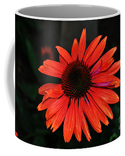Coffee Mug featuring the photograph Just As Pretty by Judy Wolinsky