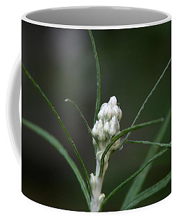 Coffee Mug featuring the photograph Just Budding by Denyse Duhaime