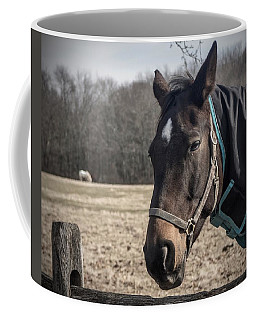Just Chillin Coffee Mug by Photographic Arts And Design Studio