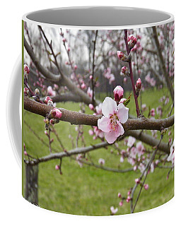Just Peachy 3 Coffee Mug