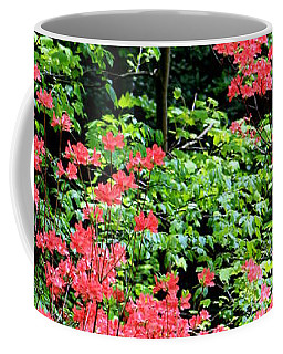 Coffee Mug featuring the photograph Just Pretty by Deborah  Crew-Johnson