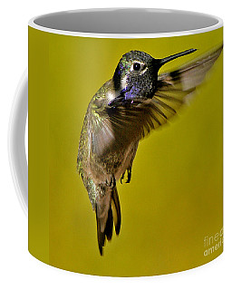 Coffee Mug featuring the photograph Juvenile Male Allen Hummingbird In Flight Ready To Land by Jay Milo