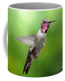 Coffee Mug featuring the photograph Juvenile Male Anna's In Flight by Jay Milo