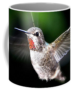 Juvenile Red Thoated Hummingbird Coffee Mug