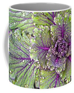 Kale Plant In The Rain Coffee Mug