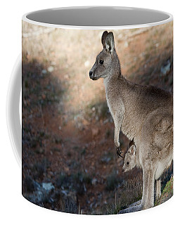 Kangaroo And Joey Coffee Mug