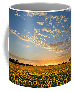 Kansas Sunflowers At Sunset Coffee Mug by Catherine Sherman