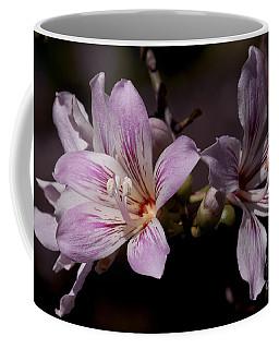Kapok Bloom Coffee Mug