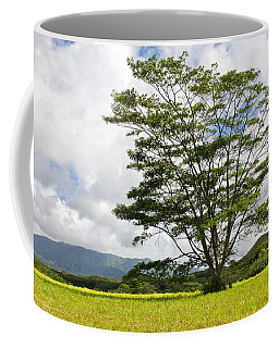 Kauai Umbrella Tree Coffee Mug